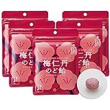 森下仁丹 梅仁丹のど飴(5袋セット)/ 60g(約17粒)×5袋