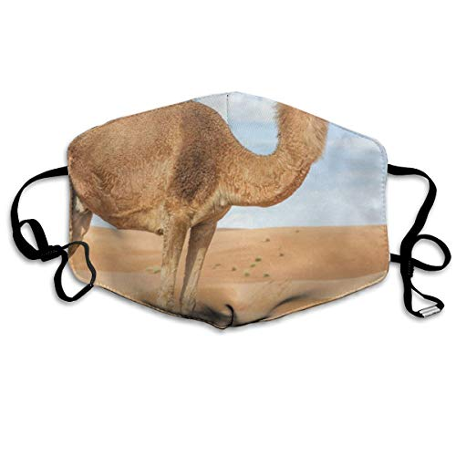 Face Mask India Wild Camel Marvellous Cycling Half Face Earloop Ski Mask for Girls