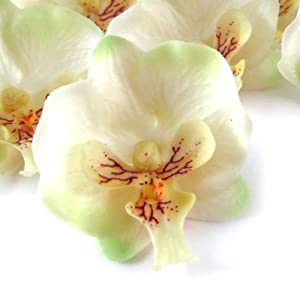 "(12) Small Ivory Phalaenopsis Orchid Silk Flower Heads - 2"" - Artificial Flowers Heads Fabric Floral Supplies Wholesale Lot for Wedding Flowers Accessories Make Bridal Hair Clips Headbands Dress 4"