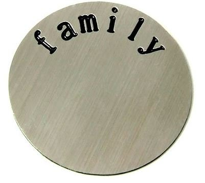 Diva Dangles FAMILY Stainless Steel Floating Plate, 22mm Fits Large Size Glass Lockets