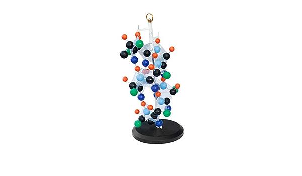 Estructura secundaria de proteínas de Órganos Modelo Simulado ...