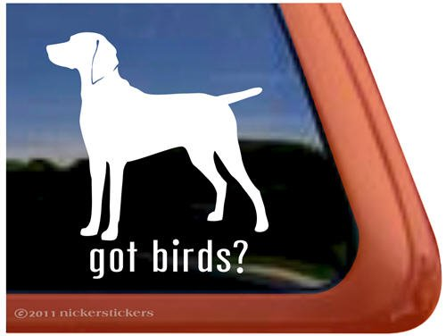Got Birds? Weimaraner Dog Vinyl Window Decal Sticker