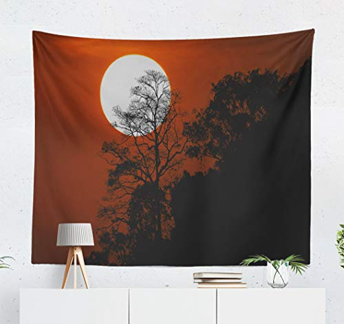 (Kutita Tapestry Wall Hanging Halloween with Silhouette Trees Mountain Spooky Sunset Sky Wall Tapestry Home Decorations for Bedroom Living Room Dorm Decor in 60