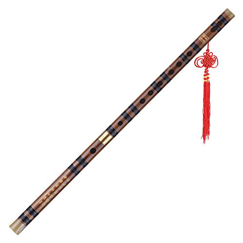 ammoon Pluggable Bitter Bamboo Flute Dizi Traditional Handmade Chinese Musical Woodwind Instrument Key of G Study Level Professional Performance