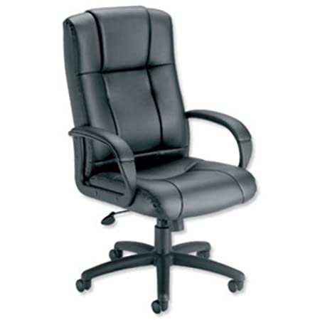 Trexus Intro Sussex Manager Chair Back H670mm W530xD520xH500 600mm Leather  Black