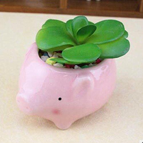 Pig Pot - 6