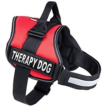 Amazon Com Therapy Dog Harness Service Working Vest