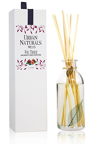 Urban Natural - Urban Naturals FIG Scented Aromatherapy Oil Reed Diffuser by Ripe Fig, Geranium, Jasmine, Amber & Sandalwood | Air Freshener Made with Essential Oils | Great Gift Idea for Mom | Made in the USA