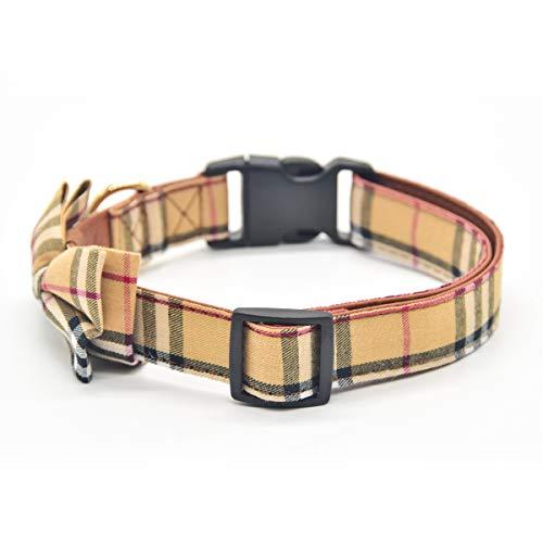 Buy designer dog collar and leash