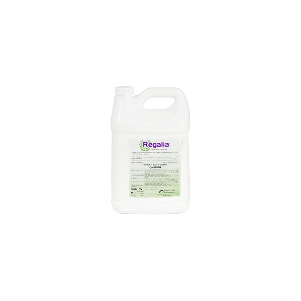 Marrone Bio Innovations Regalia Fungicide PTO (1 Gal)