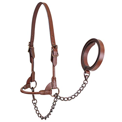 Derby Originals Bronze Beauty Premium Round Rolled Leather Cattle Show Halter with Matching Chain Lead - One Year Limited Manufacturer's Warranty (Leather Round Halter)