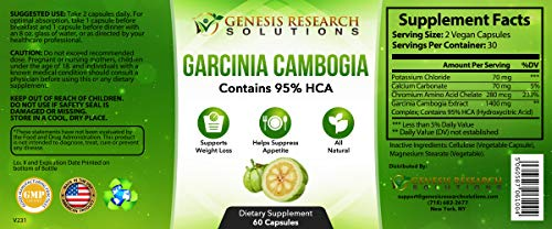 100 Pure 95 HCA Genuine Garcinia Cambogia Plus, Healthy Appetite Suppressant for Natural Weight Loss Detox Diet. Plus Energy Focus Booster – 100 Natural Supplement Extract. 3 Pack