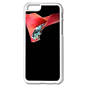 Btbk XY Frog Case Cover For IPhone 6