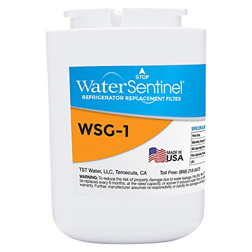 WaterSentinel WSG-1 Made in