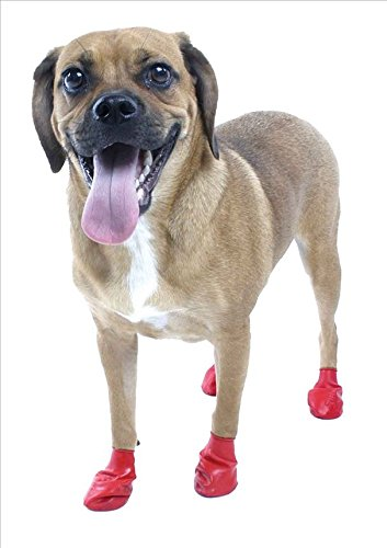 Pawz WaterProof Dog Boot