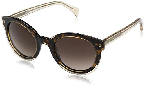 Yellow Havana Sunglasses (Tommy Hilfiger Th1437s Round Sunglasses, Yellow Havana Beige/Brown Gradient, 50)