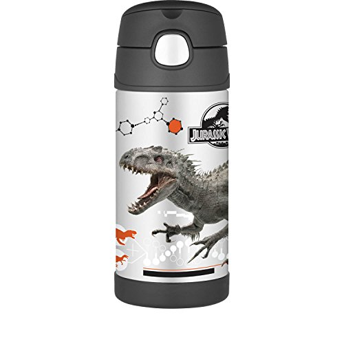 Thermos Funtainer 12 Ounce Bottle, Jurassic - Dinosaur Insulated Lunch Box