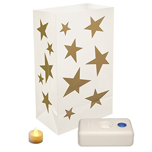 Luminaria Bags With Led Lights - 9