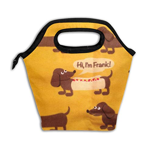 Cute Wiener Dog Fabric Wallpaper Reusable Insulated Lunch Bag Cooler Tote Box with Zipper Closure for Woman Man Work Pinic Or Travel