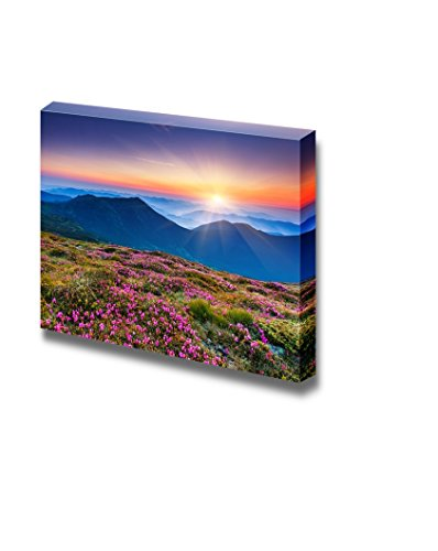Beautiful Scenery Landscape Magic Pink Rhododendron Flowers on Summer Mountain Wall Decor