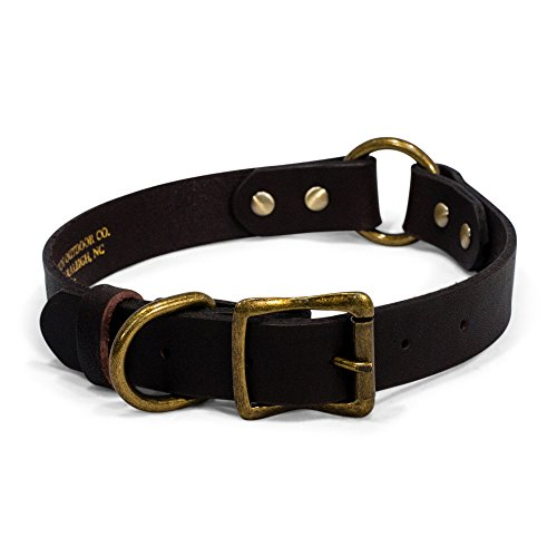 Timber and Tide Premium Heavy Duty Leather Dog Collar - Sturdy Brass Colored Buckle and Rivets - Safety O-Ring for Active Dogs Outdoor Co (19 Inch)