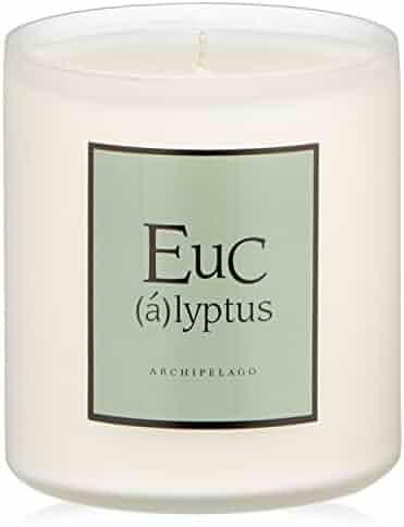 Archipelago Eucalyptus Soy Candle
