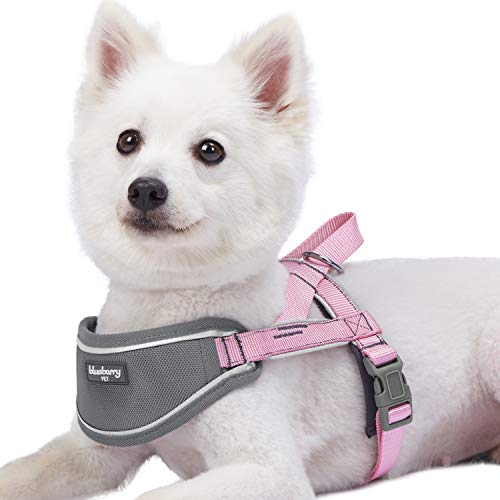 Blueberry Pet New 5 Colors Soft & Comfy 3M Reflective Strips Padded Dog Harness Vest, Chest Girth 16.5 - 21, Pink, Small, Nylon Adjustable Training Harnesses for Dogs