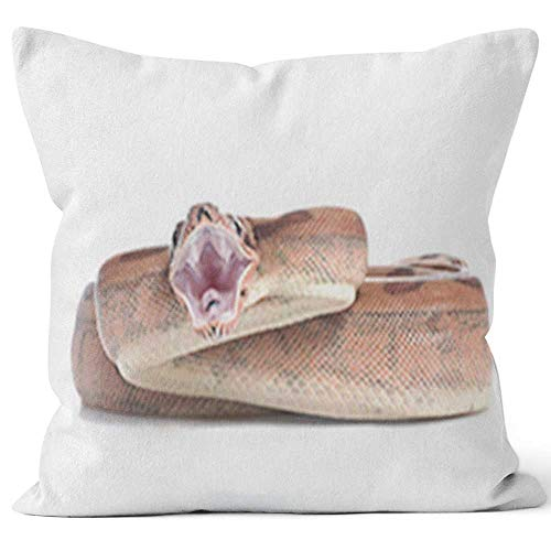 - Nine City Hypo Colombian Red Tail Boa (Boa Constrictor Constrictor) Throw Pillow Cushion Cover,HD Printing Decorative Square Accent Pillow Case
