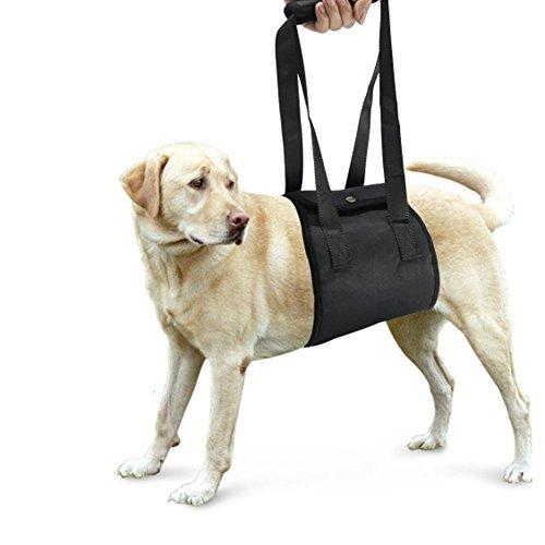 Lalawow Hund Aufzug Harness Soft-Dog Support & Rehabilitation Harness mit Griff Rehabilitation Eckzähne Hilfe Hilfe Aufzüge Ältere Hunde für junge Welpen