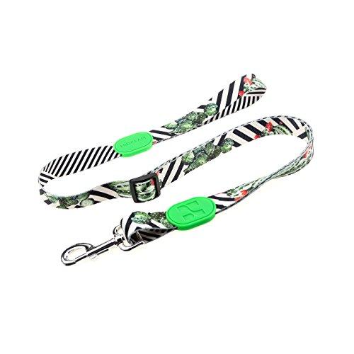 HiDREAM Adjustable Dog Leash-Profusion Series (Cactus, S) ()