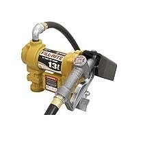 Fill-Rite SD1202G 12V DC Fuel Transfer Pump