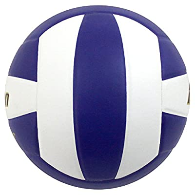 Baden Perfection Leather Volleyball by Baden Sports, Inc.@@@