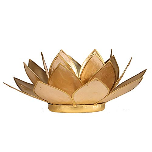 (Find Something Different Lotus Candle Holder Capiz Shell Smoked Gold Trim)
