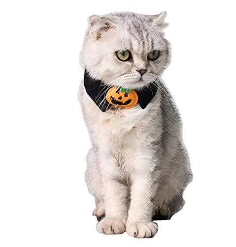 Taka Co Dog Halloween Costume 1pc Halloween Mischief Cat Small Dogs Necktie Collar Black Tie Pumpkin Bow-tie for Cat Pet Beauty Supplies ()