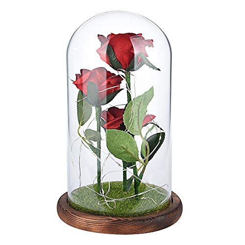 (ASOBIMONO Beauty and The Beast Simulation Rose Flower Lamp with Glass Shade, Micro Landscape LED Light for Mother's Day or Birthday Gift(US Stock))