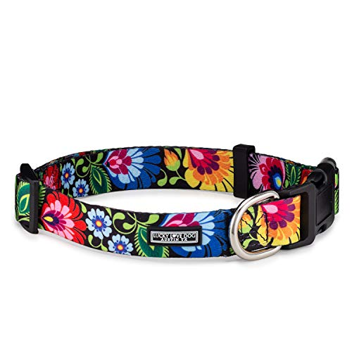 Lucky Love Dog Collars | Cute Girl Collars | Small Medium Large Female Collars | Part of Purchase Donated to Rescue (Blackbird, XS) (Boutique Dog Collars)