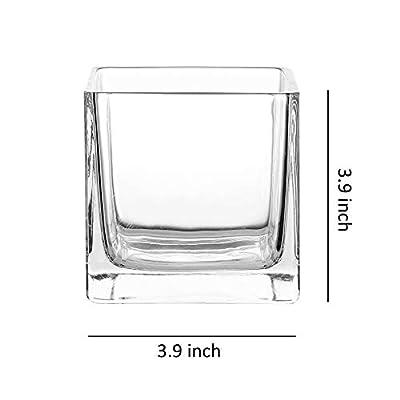 Whole Housewares Square Glass Cube Vase