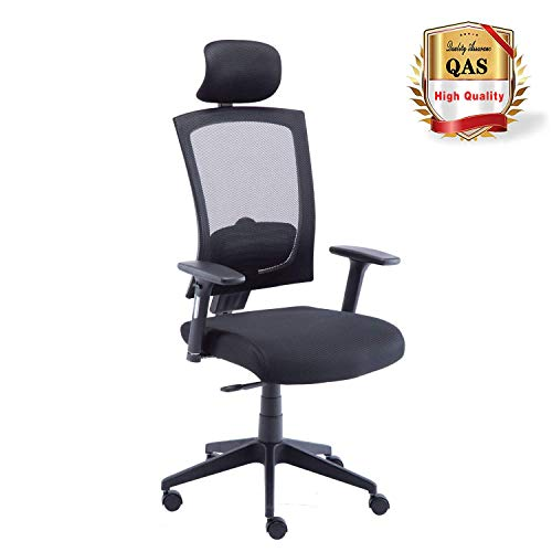 LCH High Back Ergonomic Mesh Office Chair with Mesh Seat-Adjustable 90-110 Degree Tilt Lock and Armrest Adjustable Lumbar Support and Headrest Computer Desk Task Chair