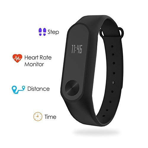 Boltt Fit Heart Rate Monitor With 3 Months Personalized Health Coaching - Fitness Activity Tracker For iOS & Android Smartphones