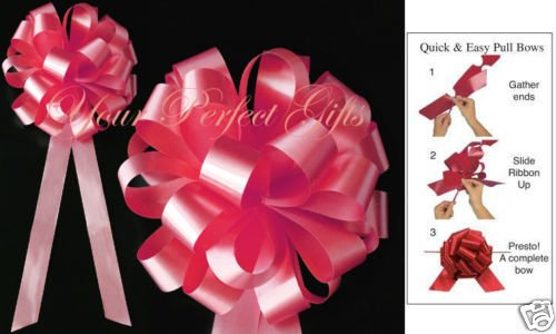 your_perfect_gifts WTAERMELON PINK 8'' WEDDING PULL PEW BOW BRIDAL SHOWE by your_perfect_gifts