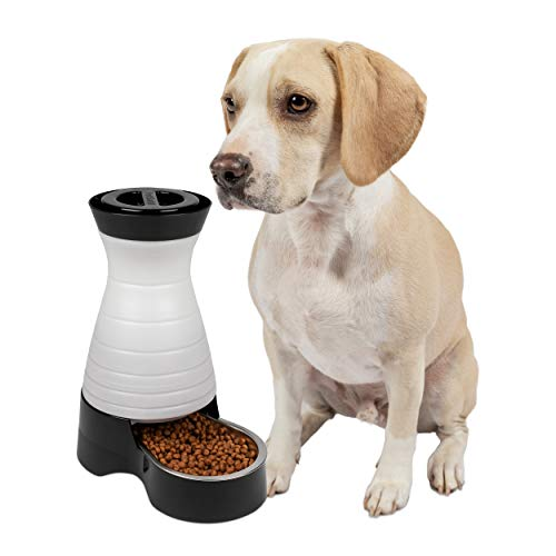 - PetSafe Healthy Pet Gravity Dog and Cat Food Station, Stainless Steel Bowl, Holds 4 lbs of Dry Dog or Cat Food, Medium