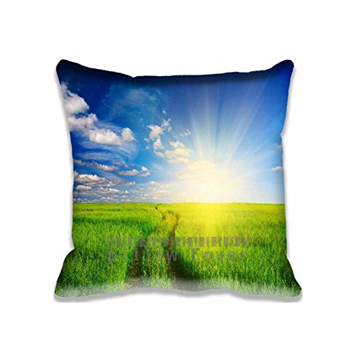 Custom Design Green Grass Field Pillow Cases Zippered , 16x16 Square Seasons Pillowcase - Summer Cushion Covers Two Size (Angry Birds Season 3 Halloween 2-12)