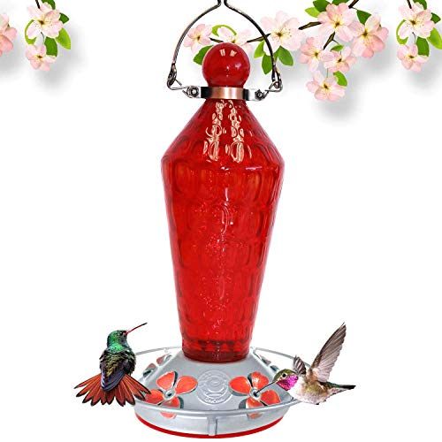Grateful Gnome - Hummingbird Feeder - Hand Blown Glass - Red Wand with Metal Clamp Hanger - 24 Fluid Ounces ()