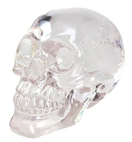Ebros Gift Pirate Cave No Man's Land Treasure Clear Acrylic Resin Translucent Skull Decorative Figurine Ossuary Macabre Halloween Decor Statue Day of The Dead Sugar Skulls Gazing Medium Replica ()