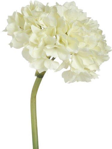 Set-of-12-Hydrangea-Stems-Cream-14-Tall