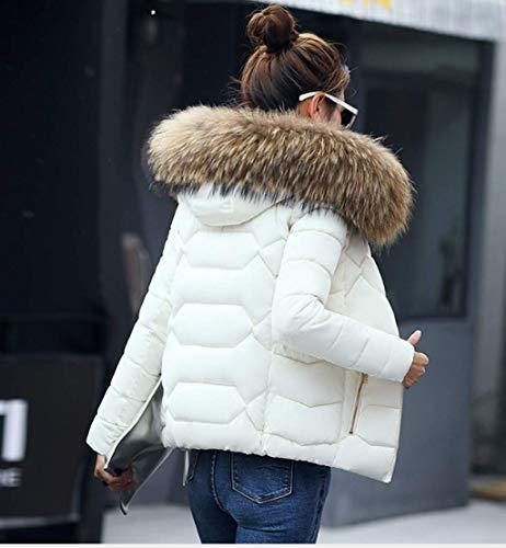 Femme Blanc Manches Manteau Pardessus Solide Blouson Chaud À Et Capuche Fourrure Longues Parka Hiver Gris Veste Ghope 6Uwnxqd86