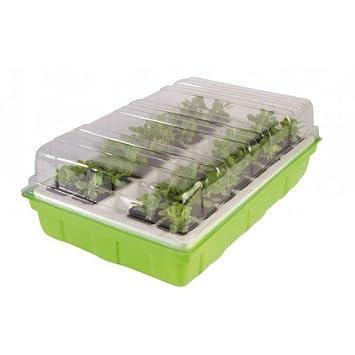 OSE Mini serre de germination pour semis - Vert: Amazon.fr: Jardin
