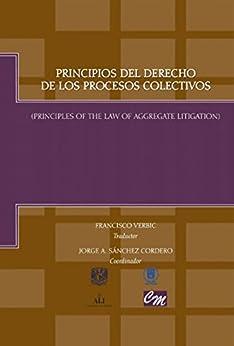 Principios del derecho de los procesos colectivos: Principles of the law of aggregate litigation de [Cordero, Jorge A. Sánchez]