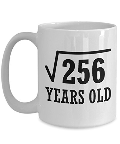 16th Birthday 16 Years Old White Mug - Square Root 256 - Unique Novelty Ceramic Coffee Cup And Present For Geek Nerd Math and Science Lover - Perfect Christmas and B Day Gift For Girls And Boys (Best Present For 16 Yr Old Girl)