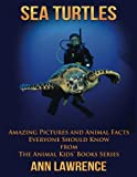 img - for Sea Turtles: Amazing Pictures and Animal Facts Everyone Should Know (The Animal Kids' Books Series) (Volume 1) book / textbook / text book